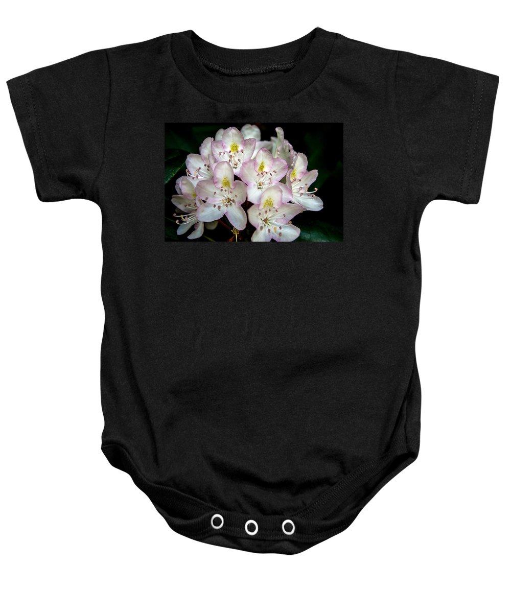 Flower Baby Onesie featuring the photograph Explosion Of Light From Dark by John Haldane