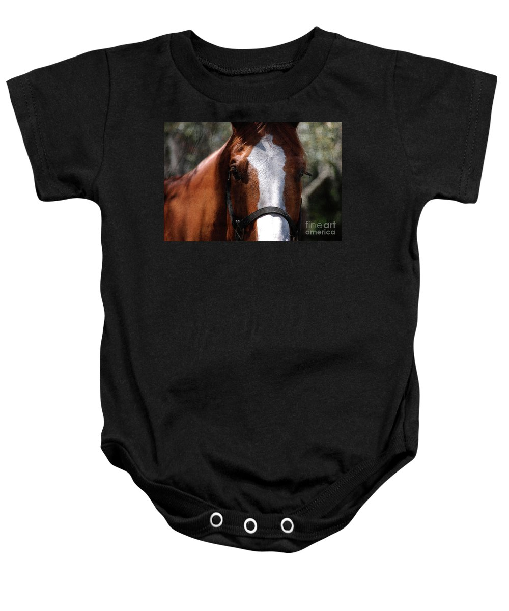 Horse Baby Onesie featuring the photograph Eye Contact by Susanne Van Hulst