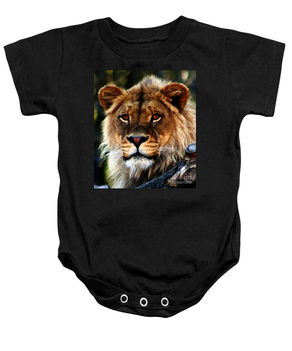 Lion Baby Onesie featuring the photograph Eyes Of The Young King by Nick Gustafson