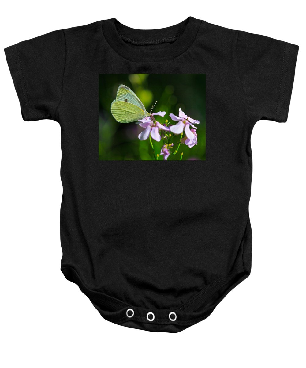 Related Tags: Butterfly Artwork Baby Onesie featuring the photograph Face First by Robert Pearson