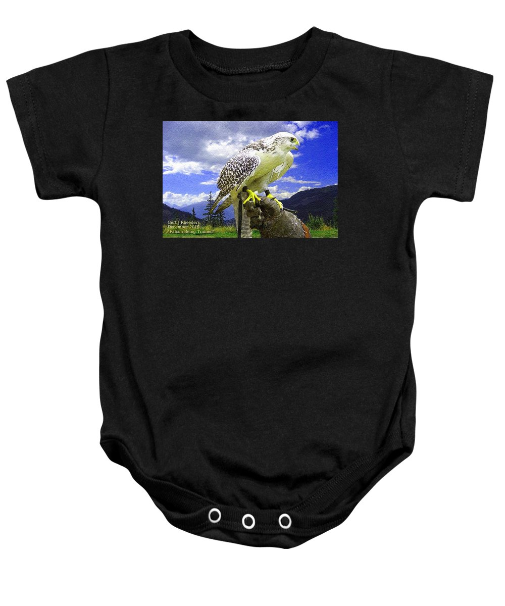 Falcon Baby Onesie featuring the painting Falcon Being Trained H A by Gert J Rheeders