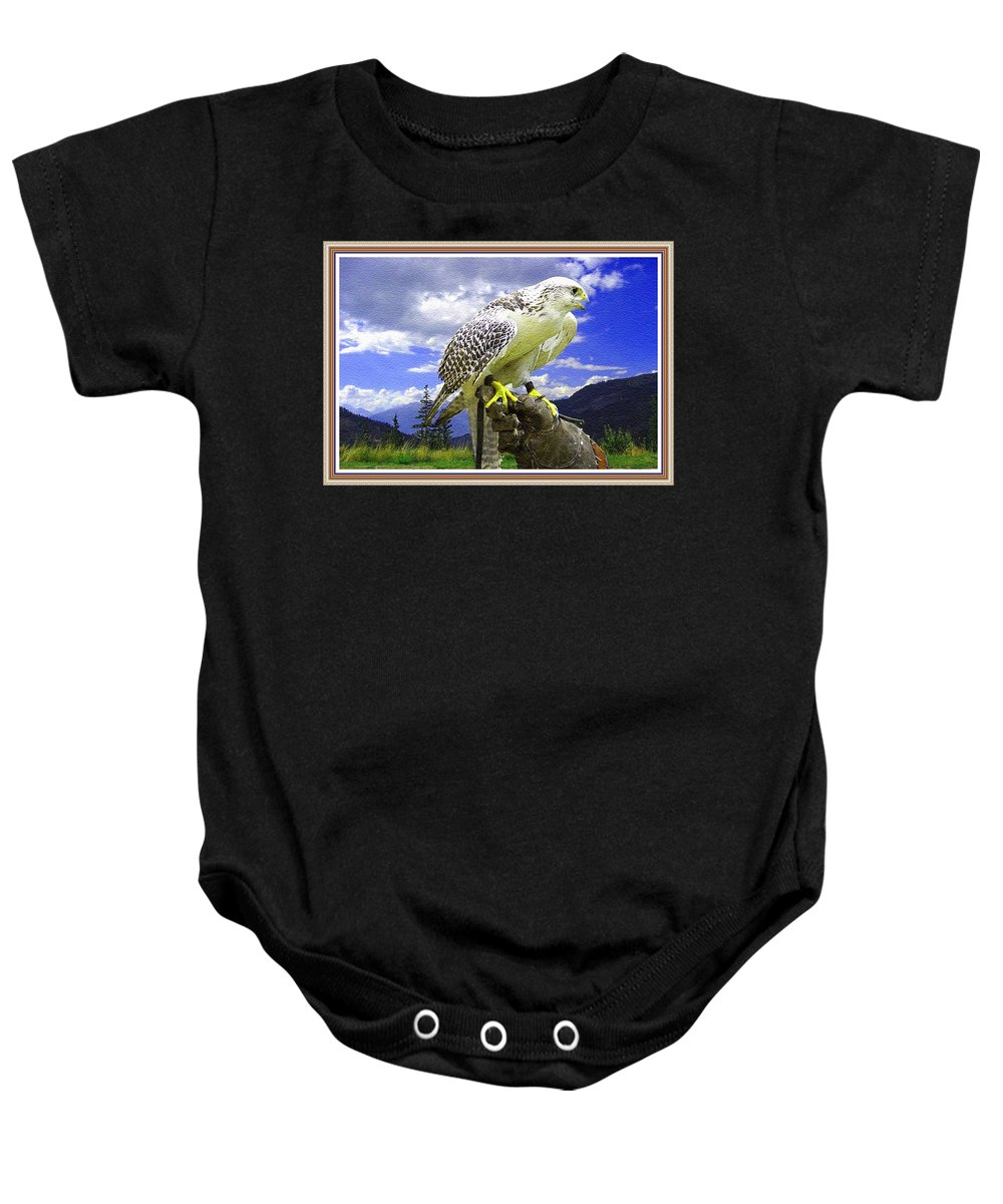 Rural Baby Onesie featuring the painting Falcon Being Trained H B With Decorative Ornate Printed Frame. by Gert J Rheeders