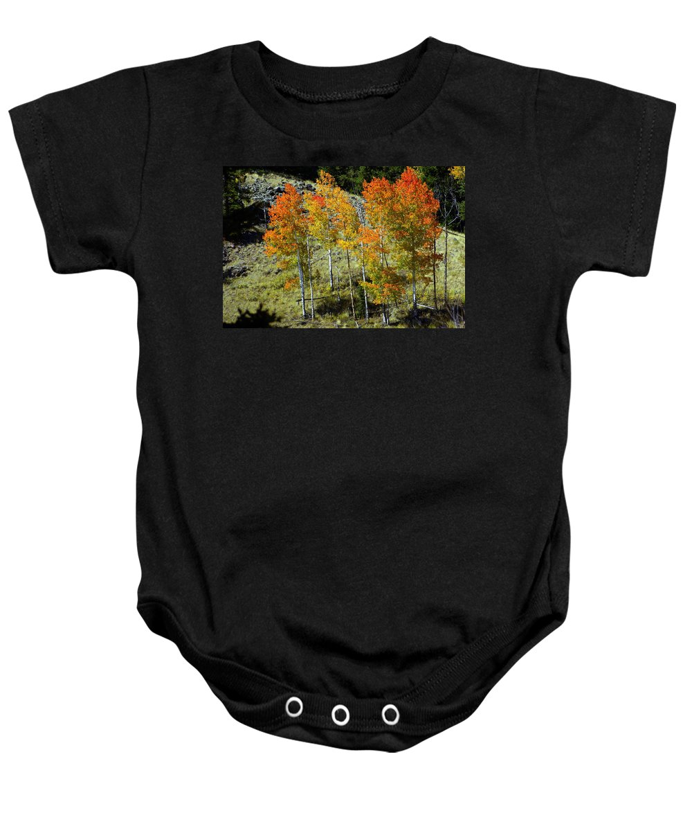 Baby Onesie featuring the photograph Fall In Colorado by Marty Koch