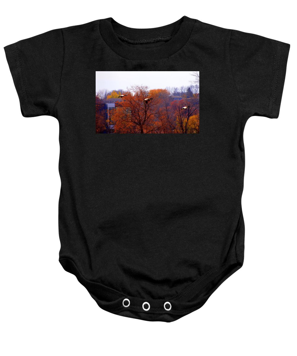 Geese Baby Onesie featuring the photograph Fall Landing by Eric Wait
