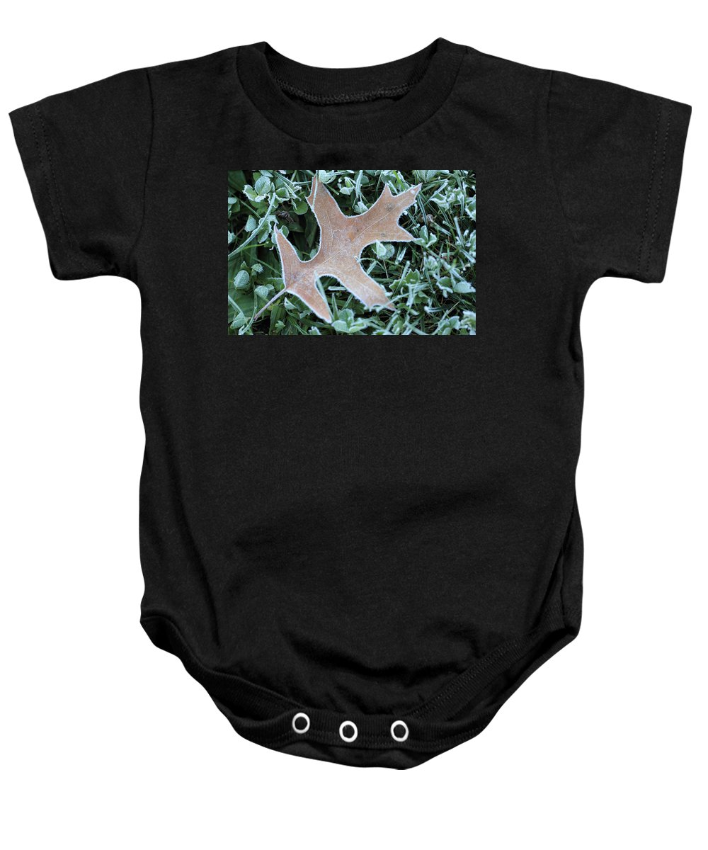 Ice Baby Onesie featuring the photograph Fall On Ice by Shelley Neff