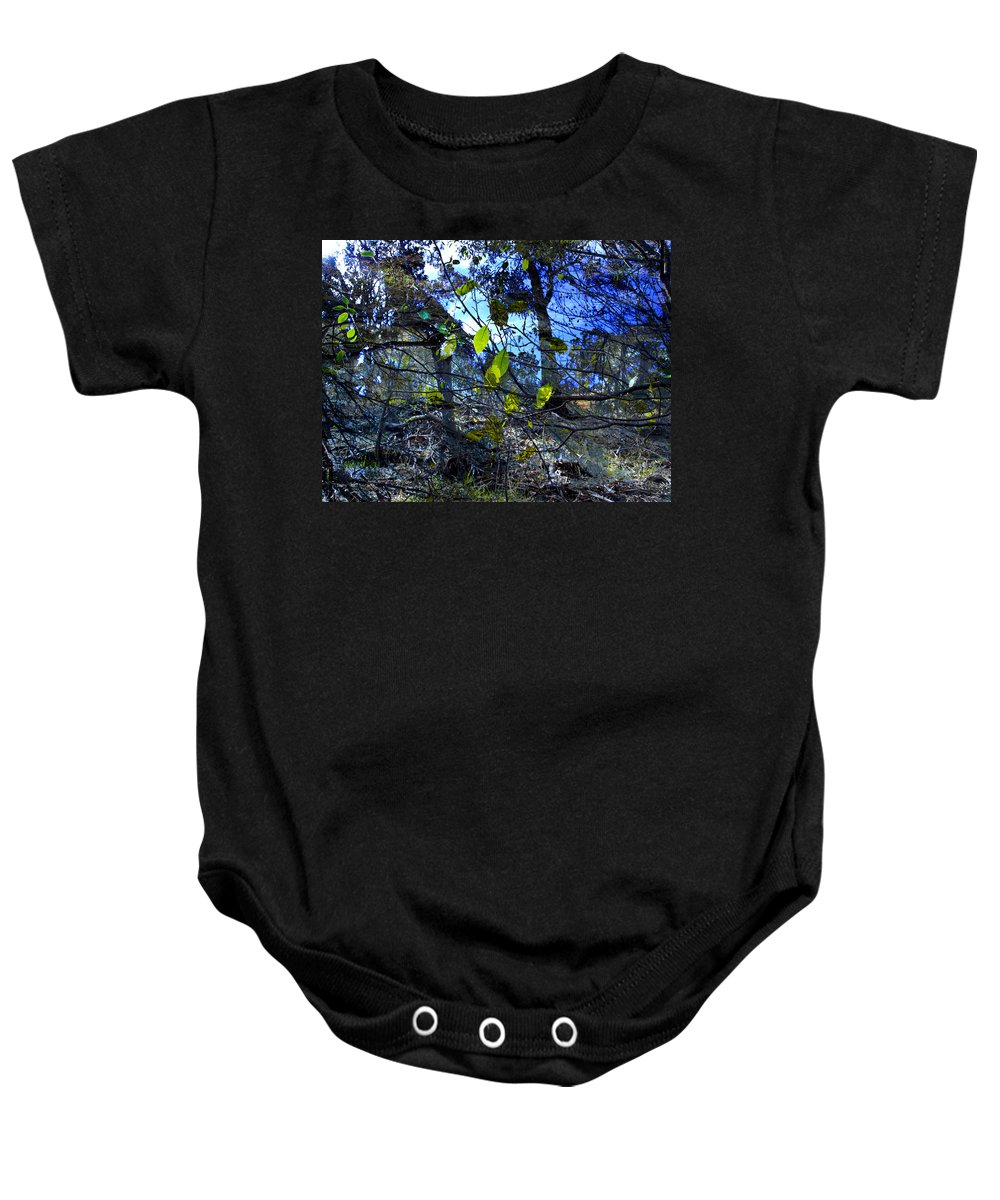 Leaves Baby Onesie featuring the photograph Falling Leaves by Kelly Jade King