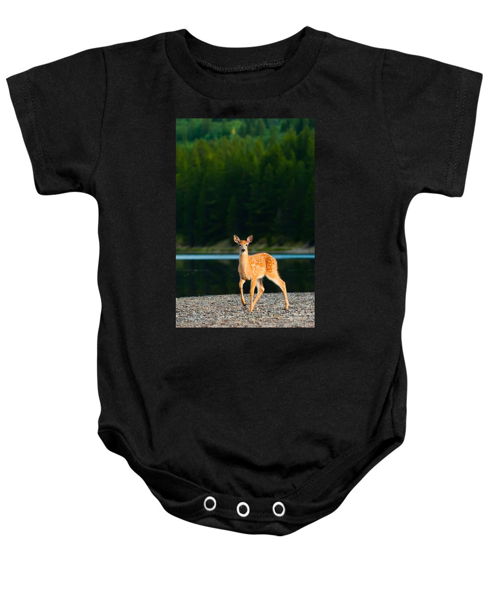 2006 Baby Onesie featuring the photograph Fawn by Sebastian Musial