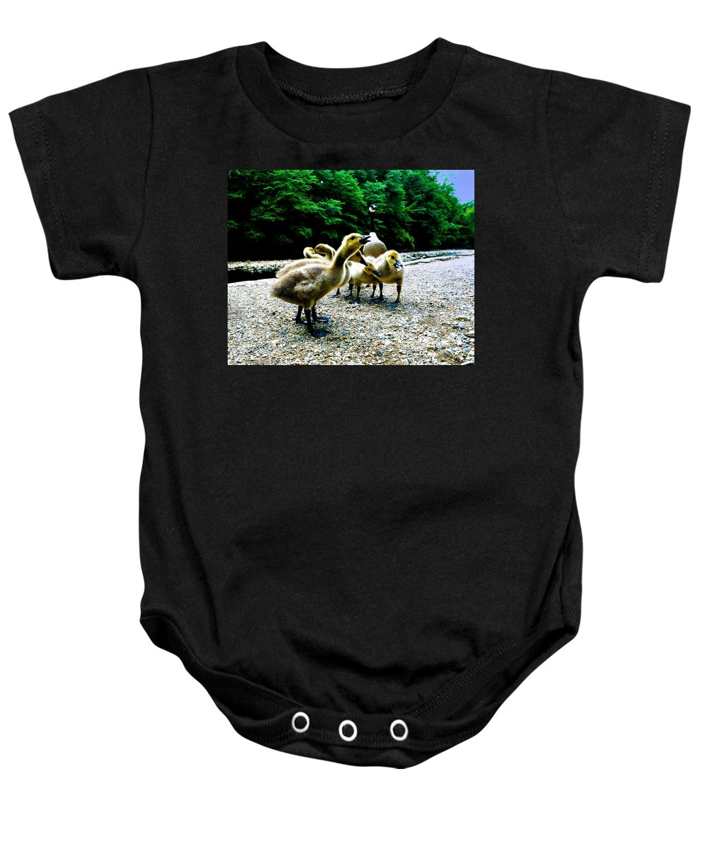 Geese Baby Onesie featuring the photograph Feed Me Seymore - Baby Geese by Bill Cannon