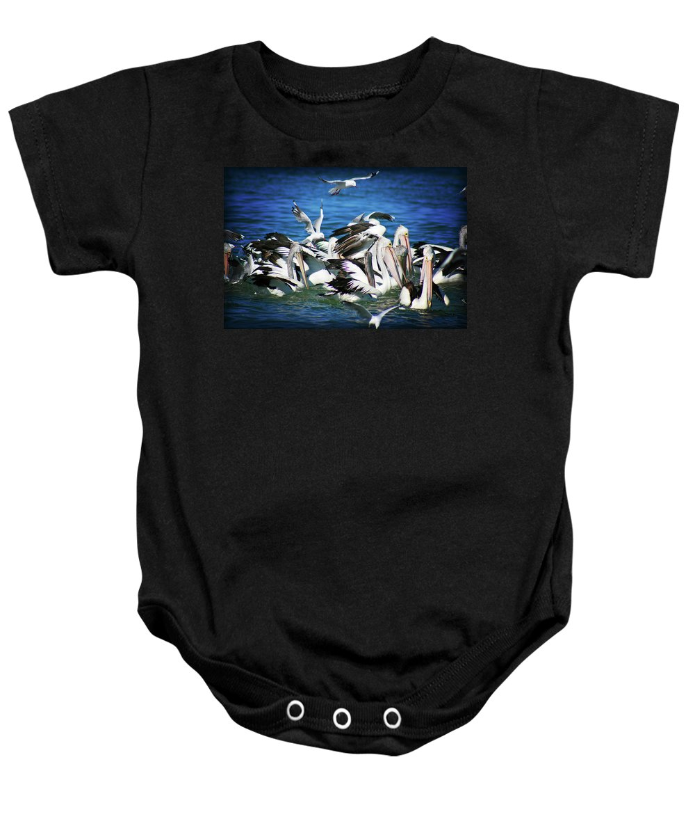 Pelicans Baby Onesie featuring the photograph Feeding Frenzy by Douglas Barnard