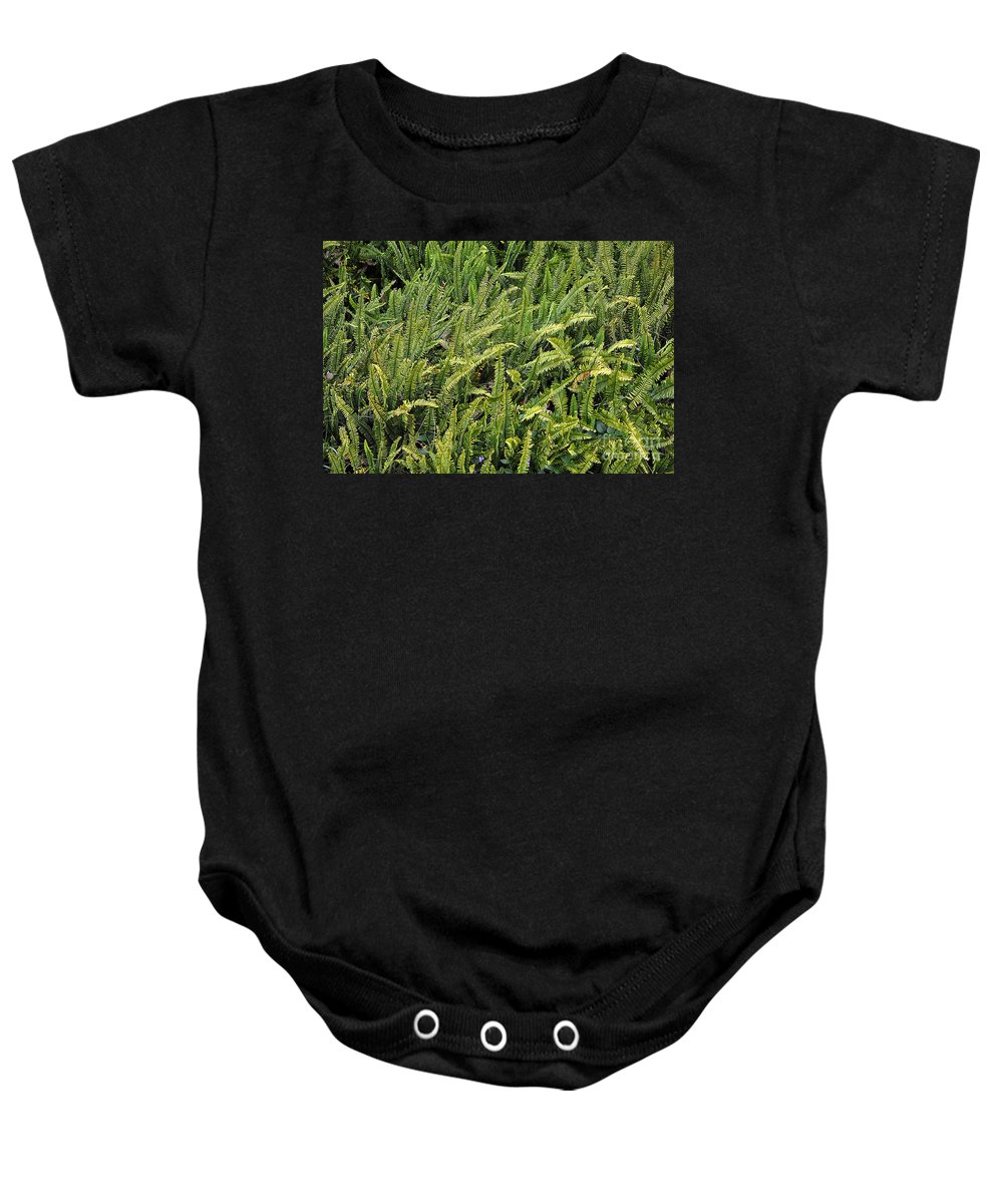 Clay Baby Onesie featuring the photograph Fern by Clayton Bruster
