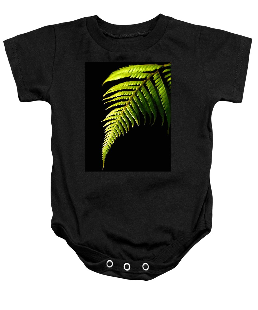 Fern Baby Onesie featuring the photograph Fern by Dragica Micki Fortuna