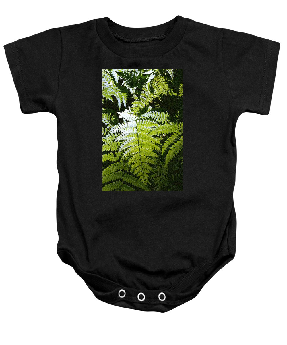 Ferns Baby Onesie featuring the photograph Ferns by Nelson Strong