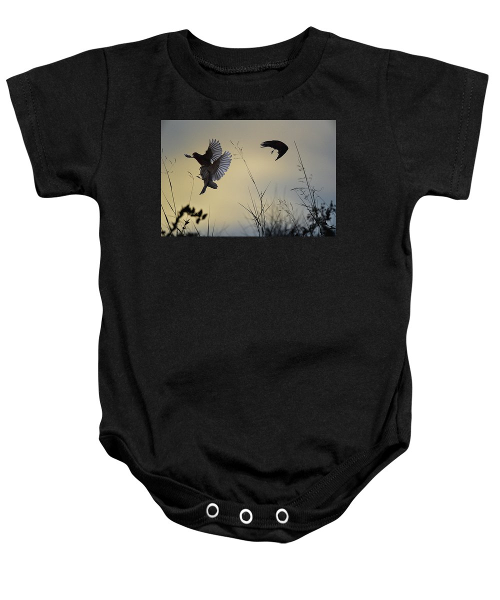 Linda Brody Baby Onesie featuring the digital art Finches Silhouette With Leaves 5 by Linda Brody