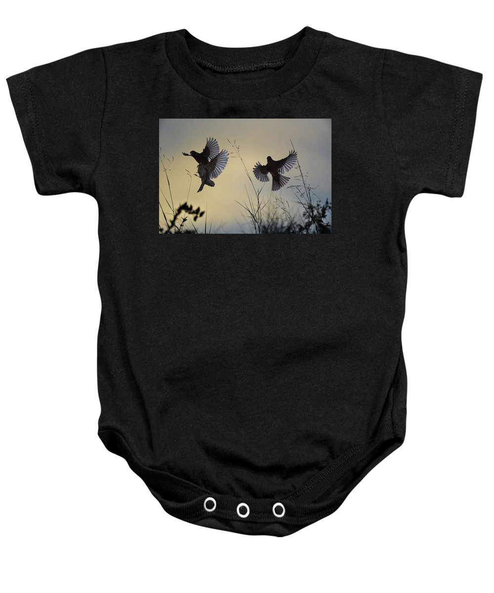 Linda Brody Baby Onesie featuring the digital art Finches Silhouette With Leaves 6 by Linda Brody