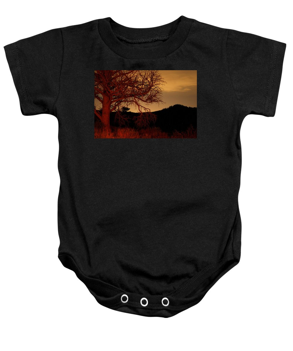 Landscape Baby Onesie featuring the photograph Fire Tree by Jeffery Ball