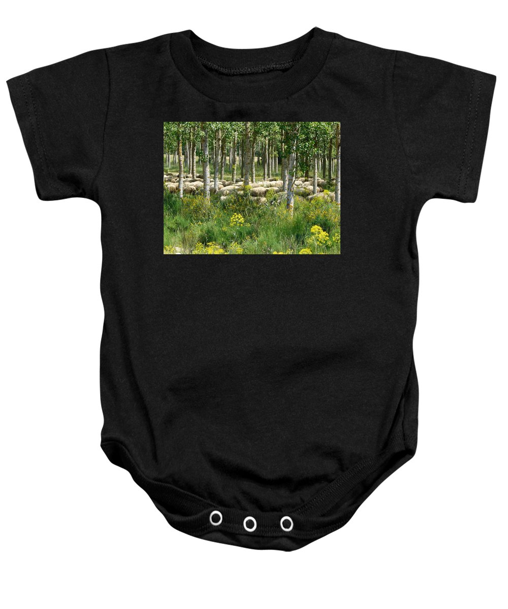 Sheep Baby Onesie featuring the photograph Flock Of Sheep by Valerie Ornstein