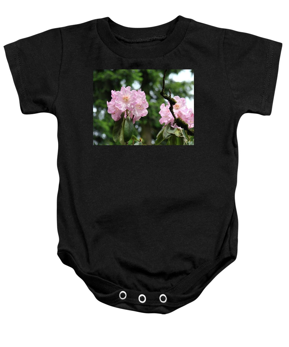 Rhodies Baby Onesie featuring the photograph Floral Garden Pink Rhododendron Flowers Baslee Troutman by Baslee Troutman