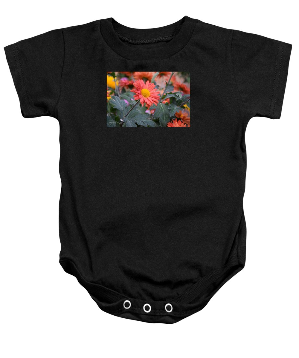 Smiles Baby Onesie featuring the photograph Floral Smiles by Camelia C