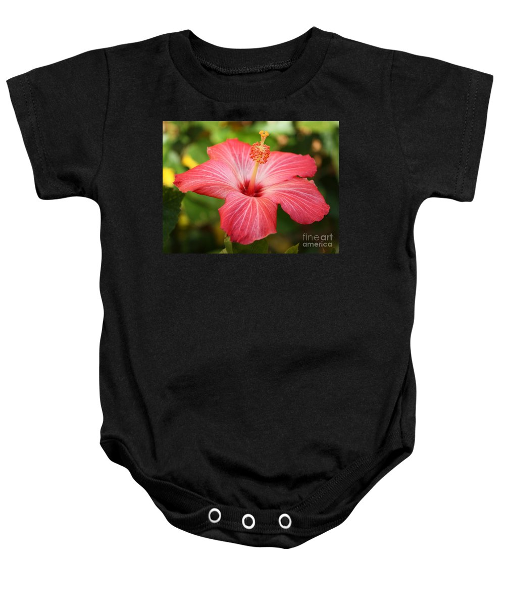 Pink Hibiscus Baby Onesie featuring the photograph Florida Hibiscus by Carol Groenen