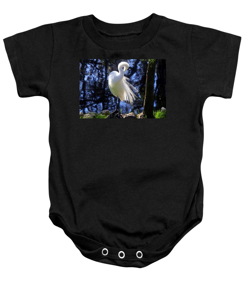 Great Egret Baby Onesie featuring the photograph Florida Living by David Lee Thompson