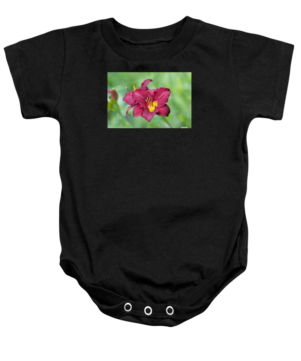 Flower Baby Onesie featuring the photograph Flower 1 by Robert Skuja
