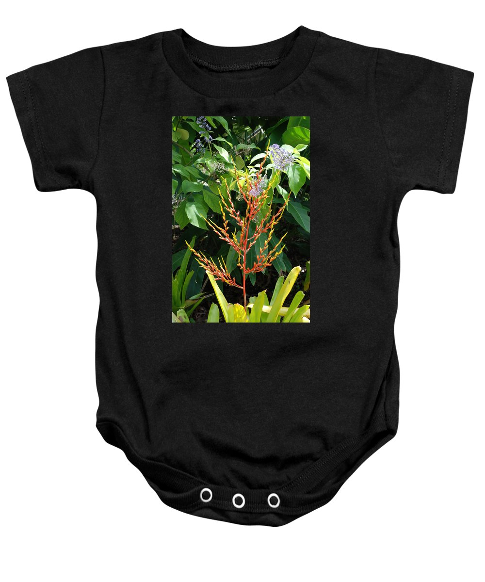 Macro Baby Onesie featuring the photograph Flower Plants by Rob Hans