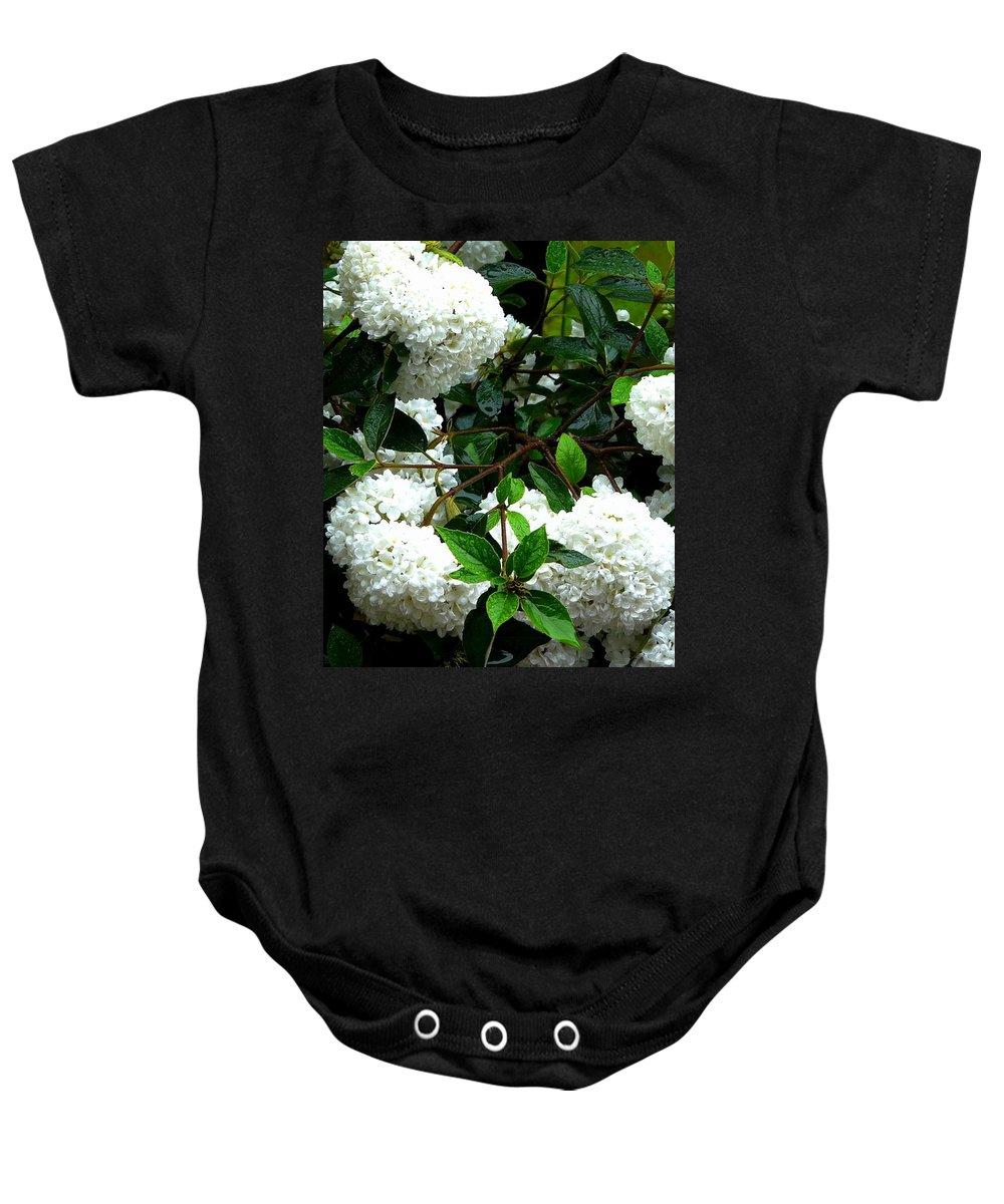 Nature Baby Onesie featuring the photograph Flower Snow Balls by Valerie Ornstein