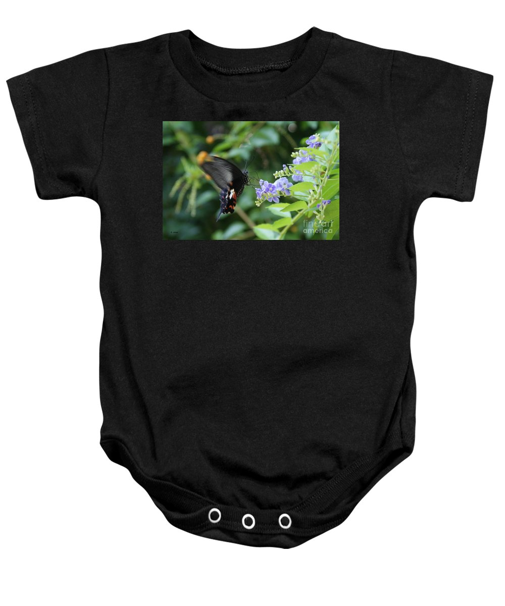 Butterfly Baby Onesie featuring the photograph Fly In Butterfly by Shelley Jones