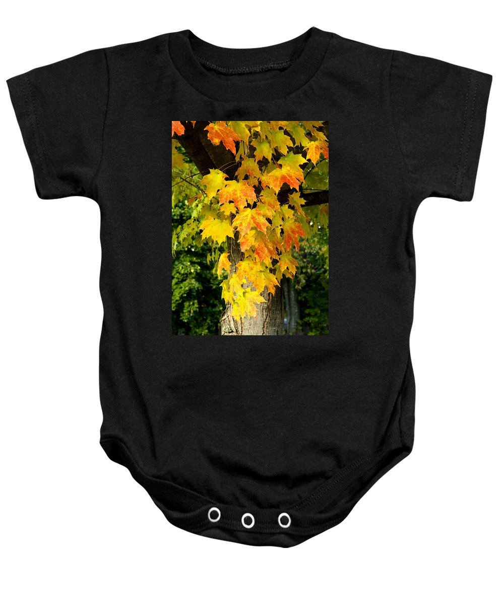 Foliage Baby Onesie featuring the photograph Foliage Fall by Greg Fortier