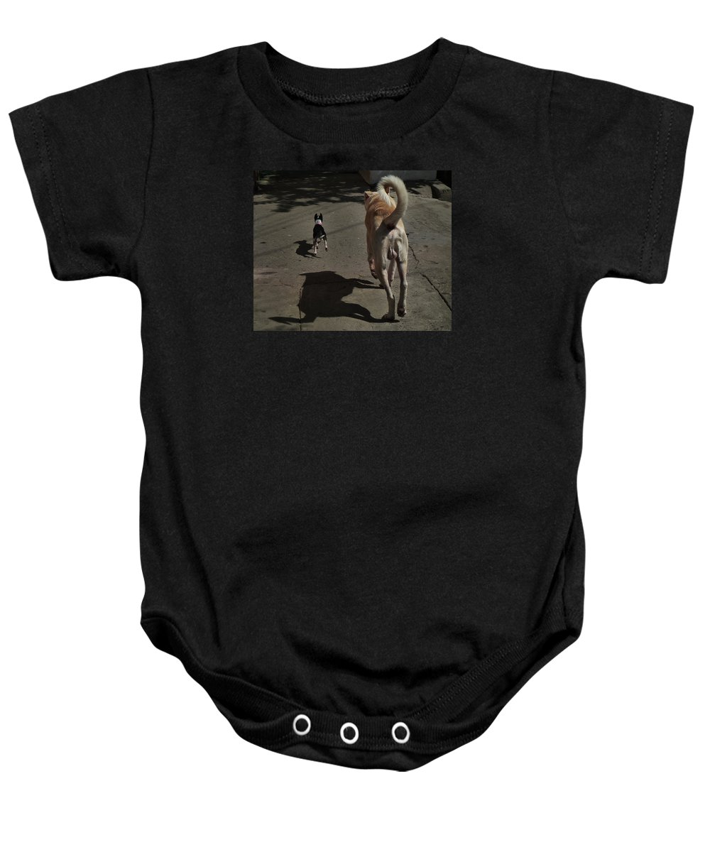 Pomeranian Baby Onesie featuring the photograph Follow Me... by Xueling Zou