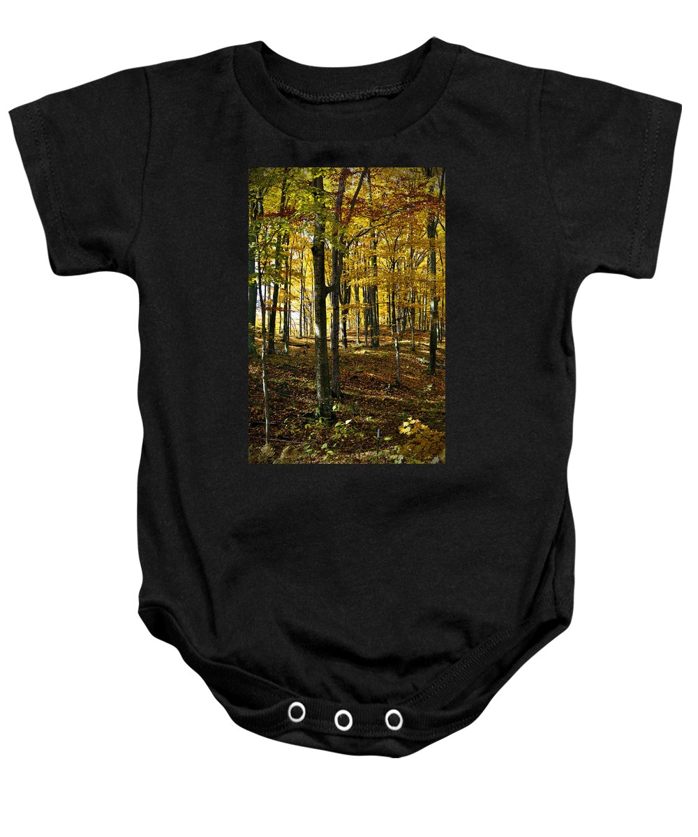 Trees Baby Onesie featuring the photograph Forest Floor One by Tim Nyberg