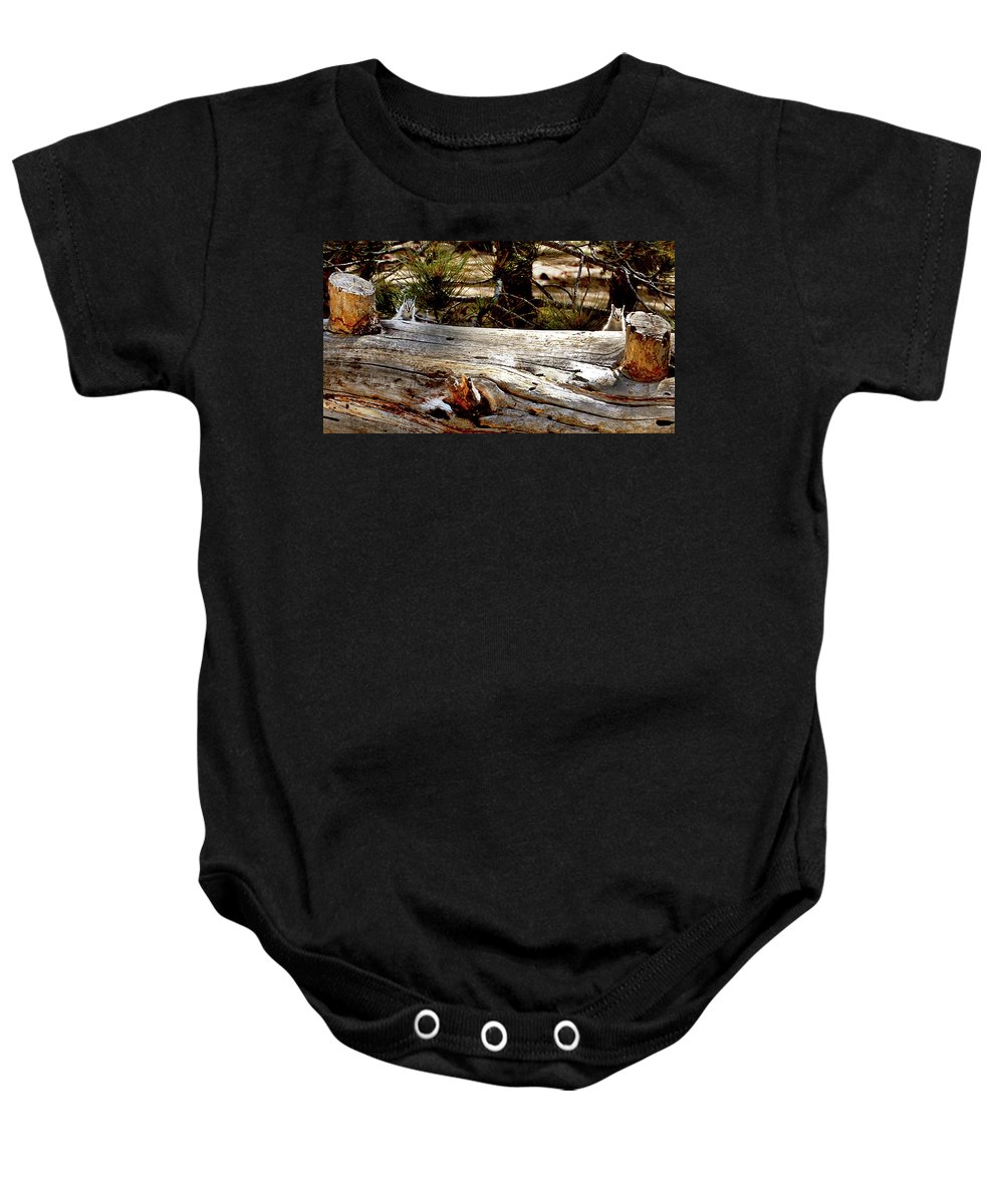Lodgepole Chipmunk Baby Onesie featuring the photograph Forest Pals by Sandra O'Toole