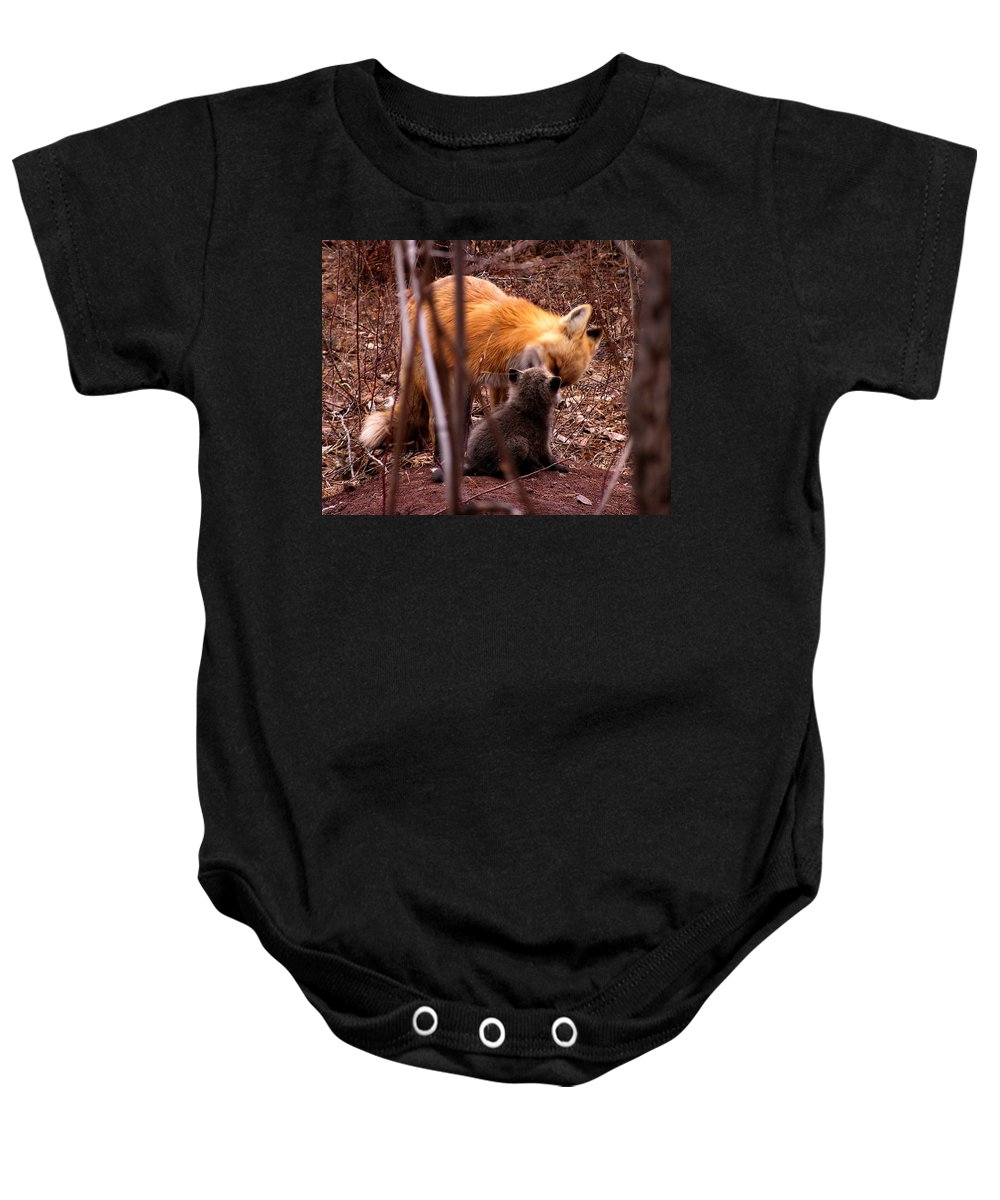 Fox Baby Onesie featuring the photograph Fox by Carol Milisen