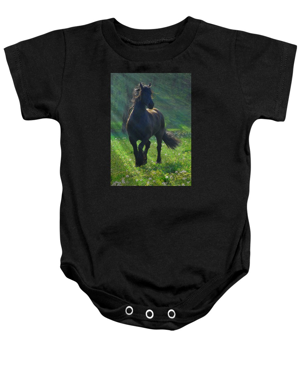 Horses Baby Onesie featuring the photograph Friesian Sun by Fran J Scott