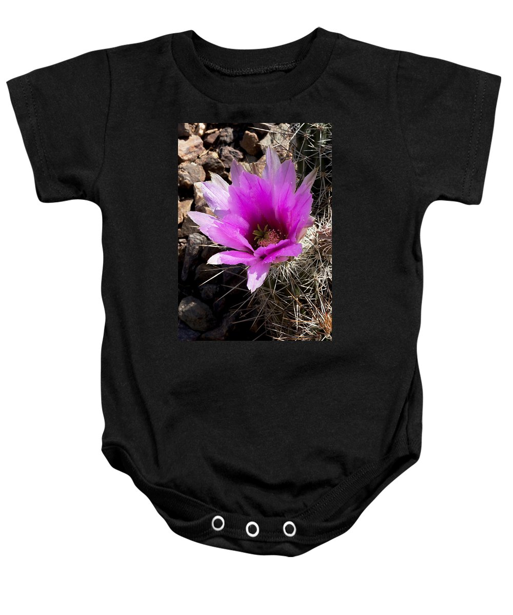 Cactus Baby Onesie featuring the photograph Fuchsia Cactus Blossom by Phyllis Denton