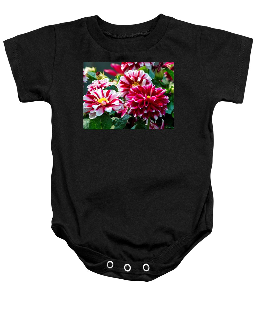 Nature Baby Onesie featuring the photograph Full Blooms by Crystal Massop