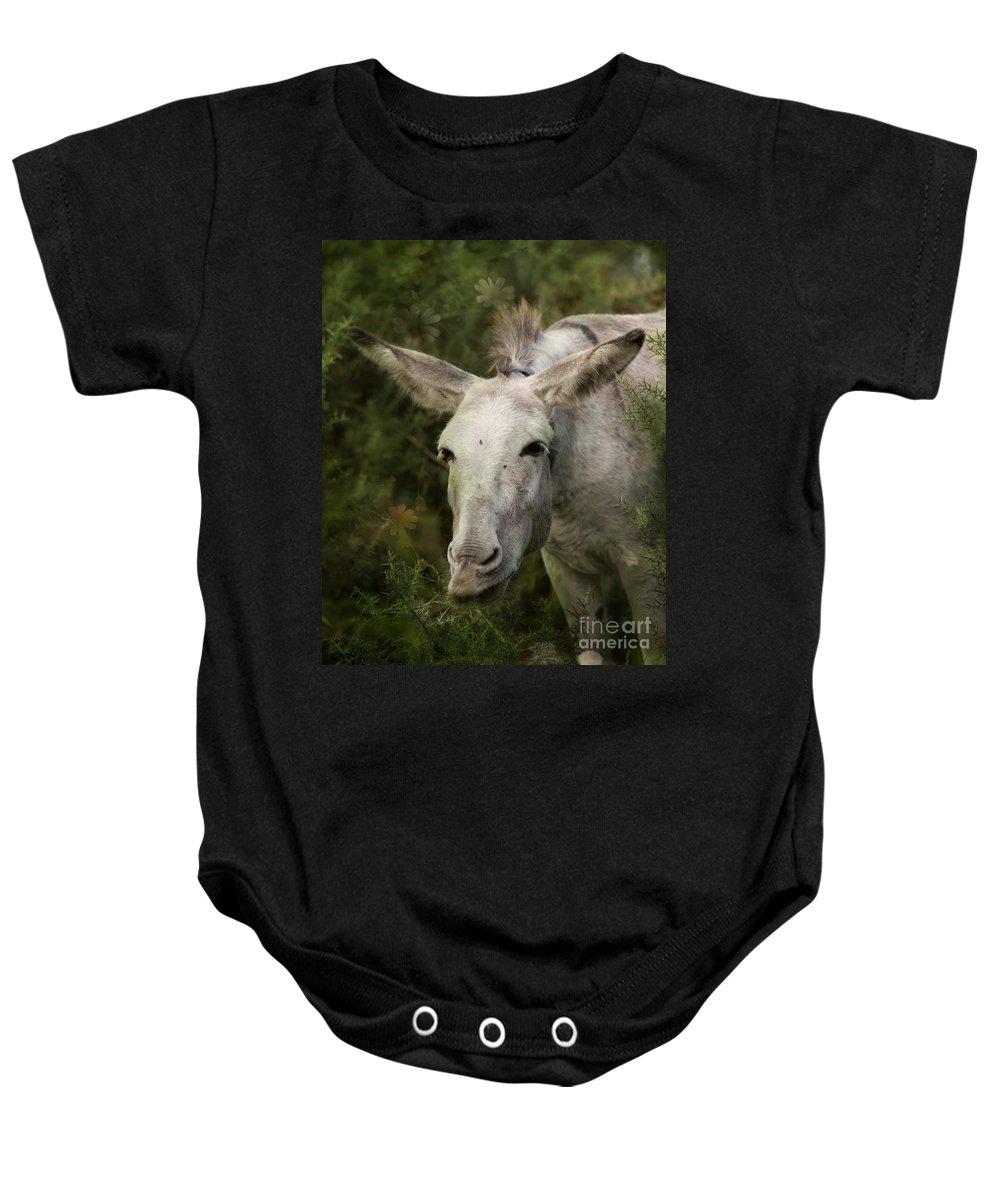 Donkey Baby Onesie featuring the photograph Funky Donkey by Angel Ciesniarska