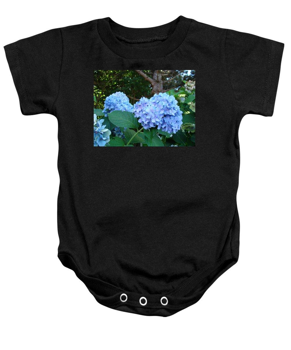 Hydrangea Baby Onesie featuring the photograph Garden Landscape Blue Hydrangeas Art Print Baslee Troutman by Baslee Troutman