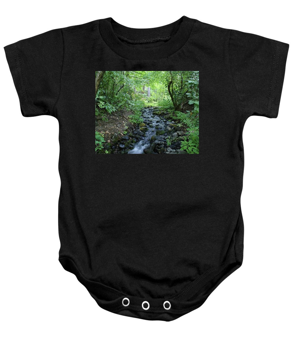 Nature Baby Onesie featuring the photograph Garden Springs Creek In Spokane by Ben Upham III