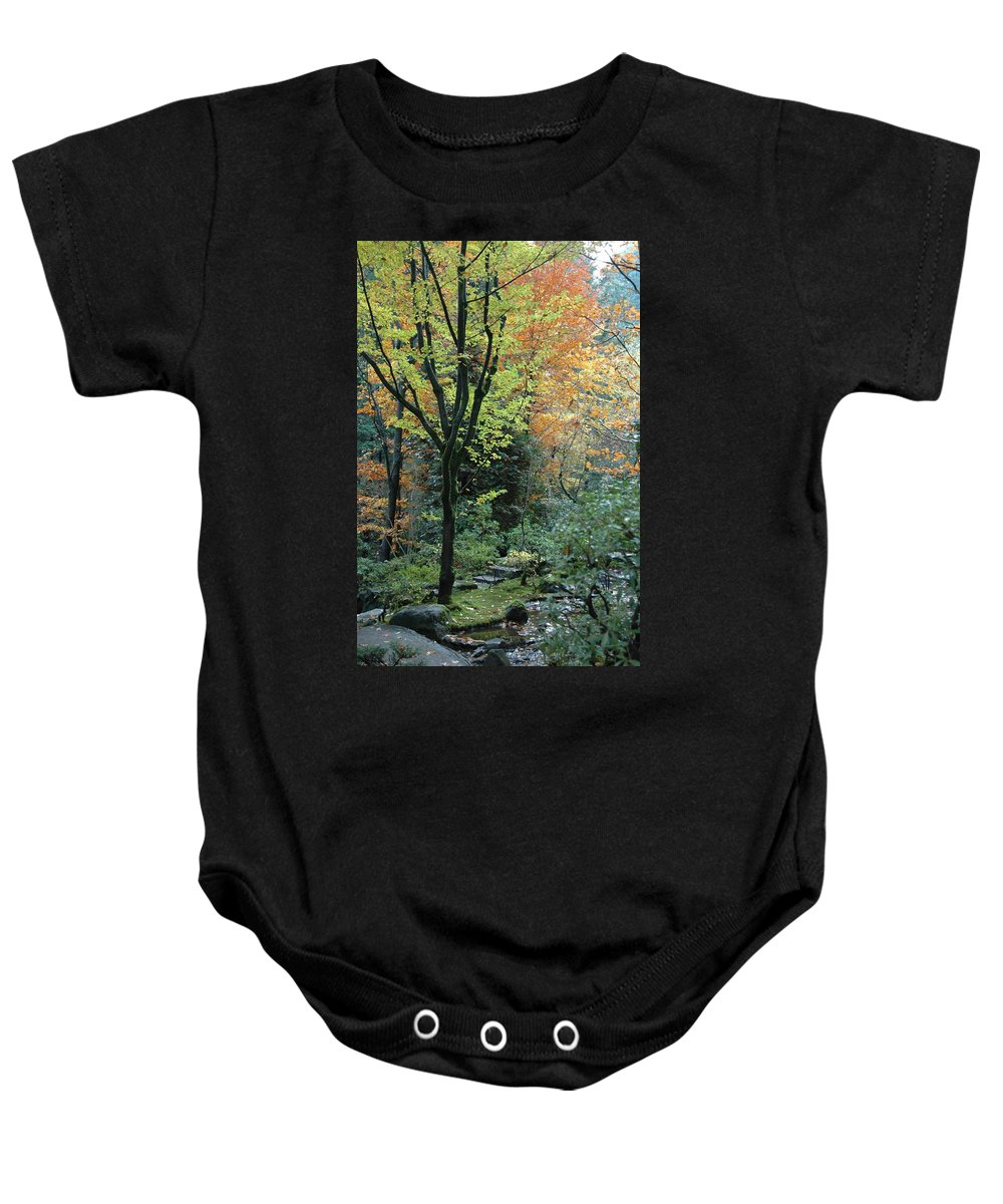 Fall Baby Onesie featuring the photograph Garden Trees by Sara Stevenson