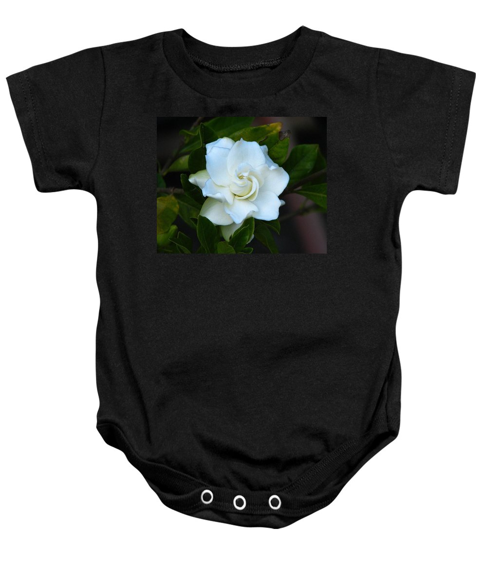 Gardenia Baby Onesie featuring the photograph Gardenia 5 by J M Farris Photography