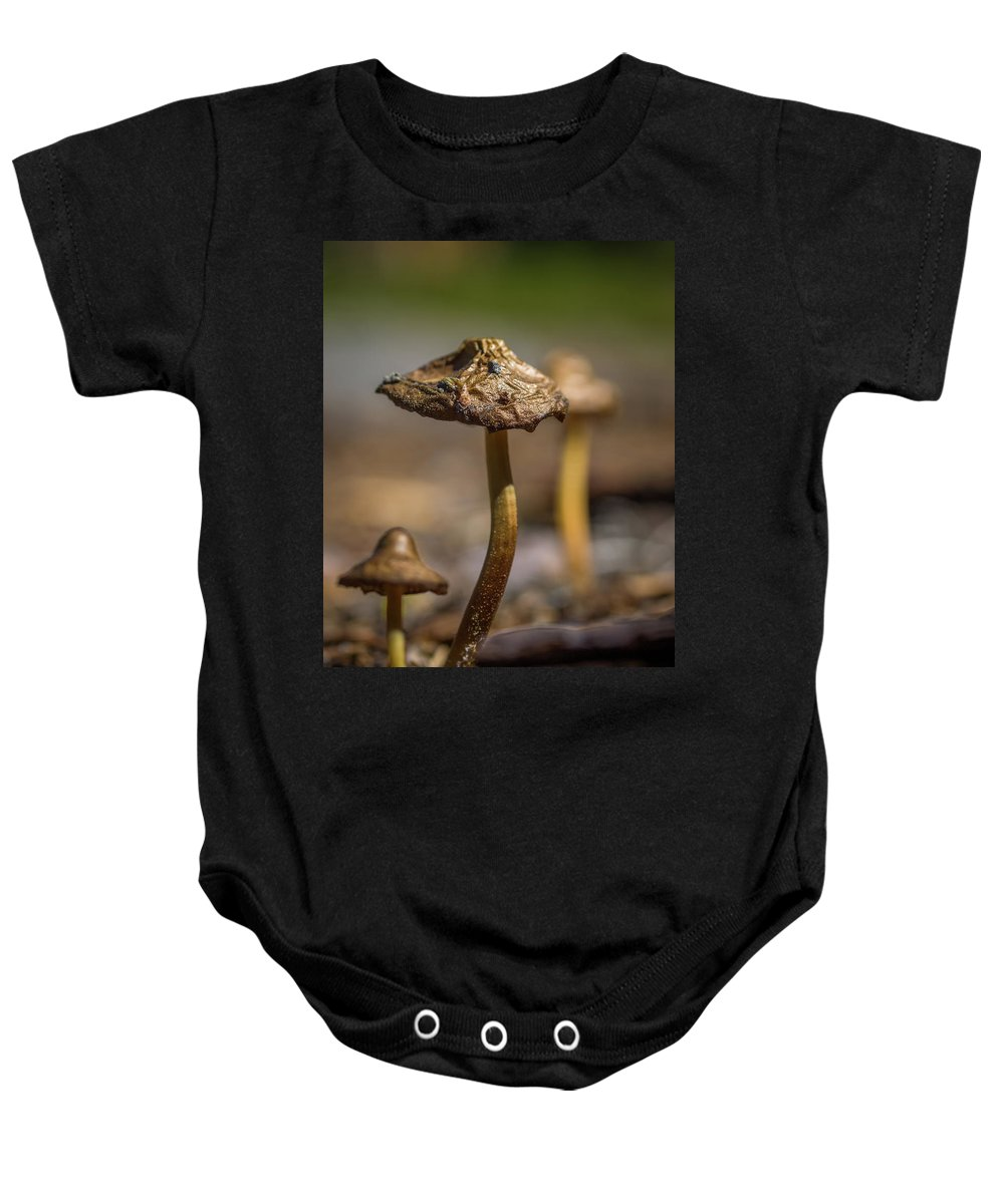 Caribou Wilderness Baby Onesie featuring the photograph Gilded by Michele James