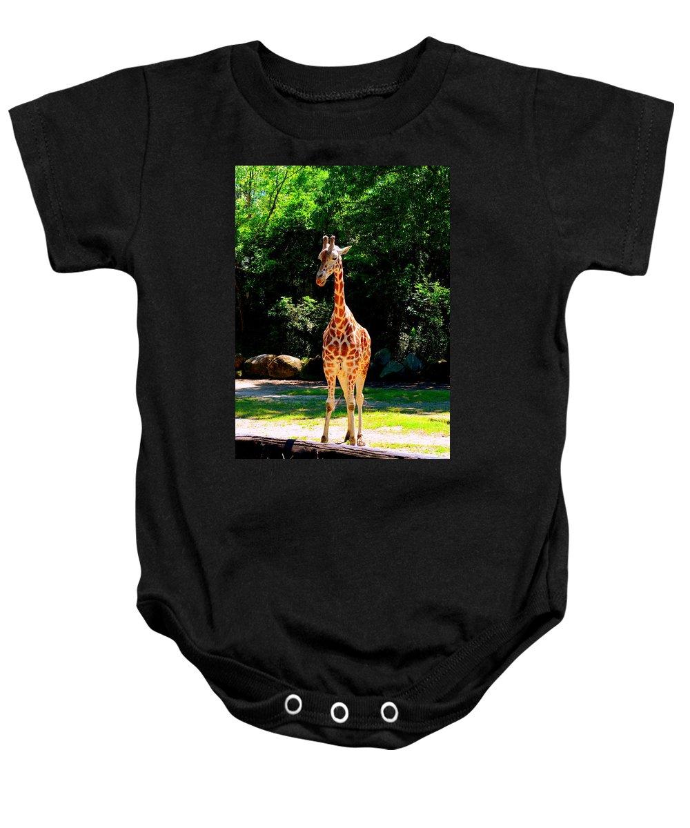 Giraffes Baby Onesie featuring the photograph Giraffe by Lisa Wooten