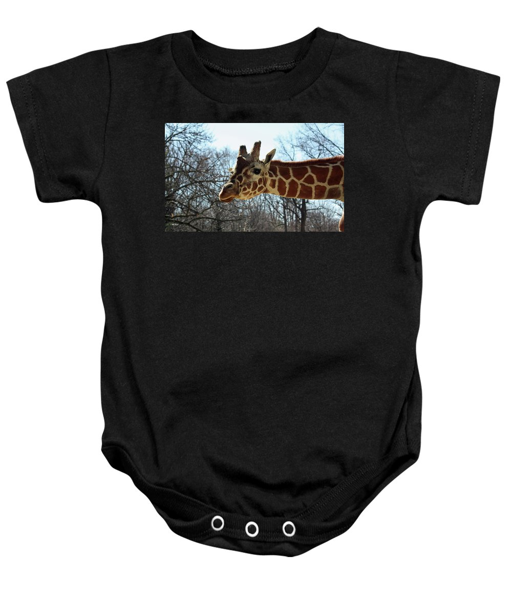Maryland Baby Onesie featuring the photograph Giraffe Stretching For A View by Ronald Reid