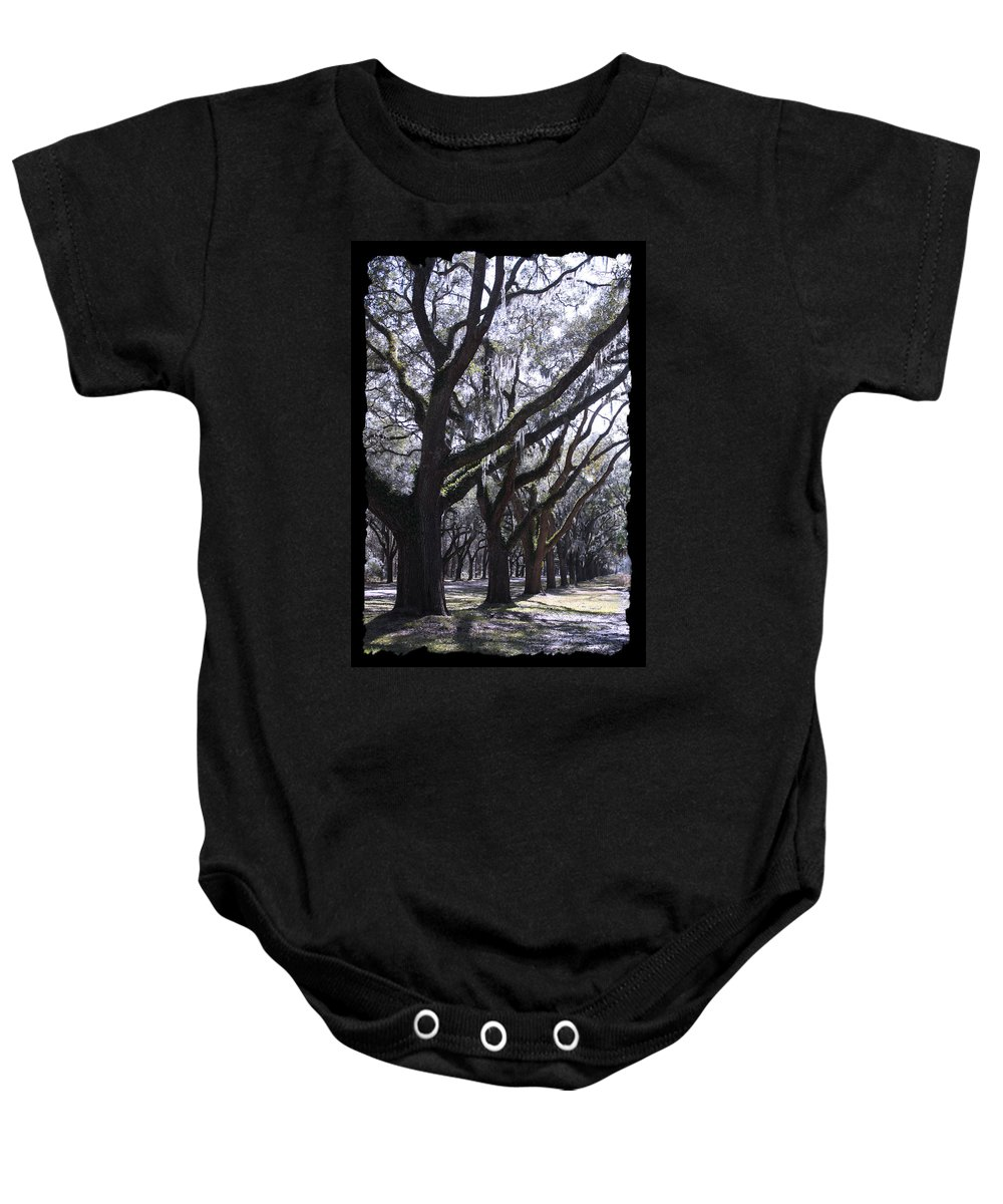 Souther Trees Baby Onesie featuring the photograph Glorious Live Oaks With Framing by Carol Groenen