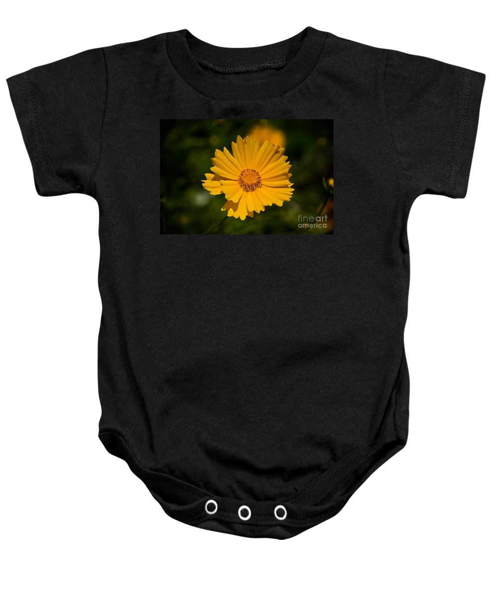 Related Tags: Baby Onesie featuring the photograph Gods Creation-3 by Robert Pearson