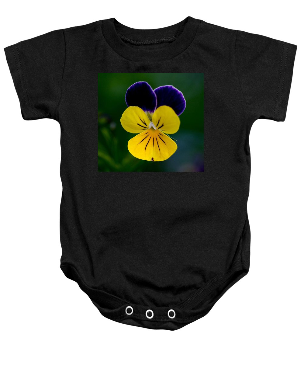Tags: Baby Onesie featuring the photograph Gods Creation by Robert Pearson