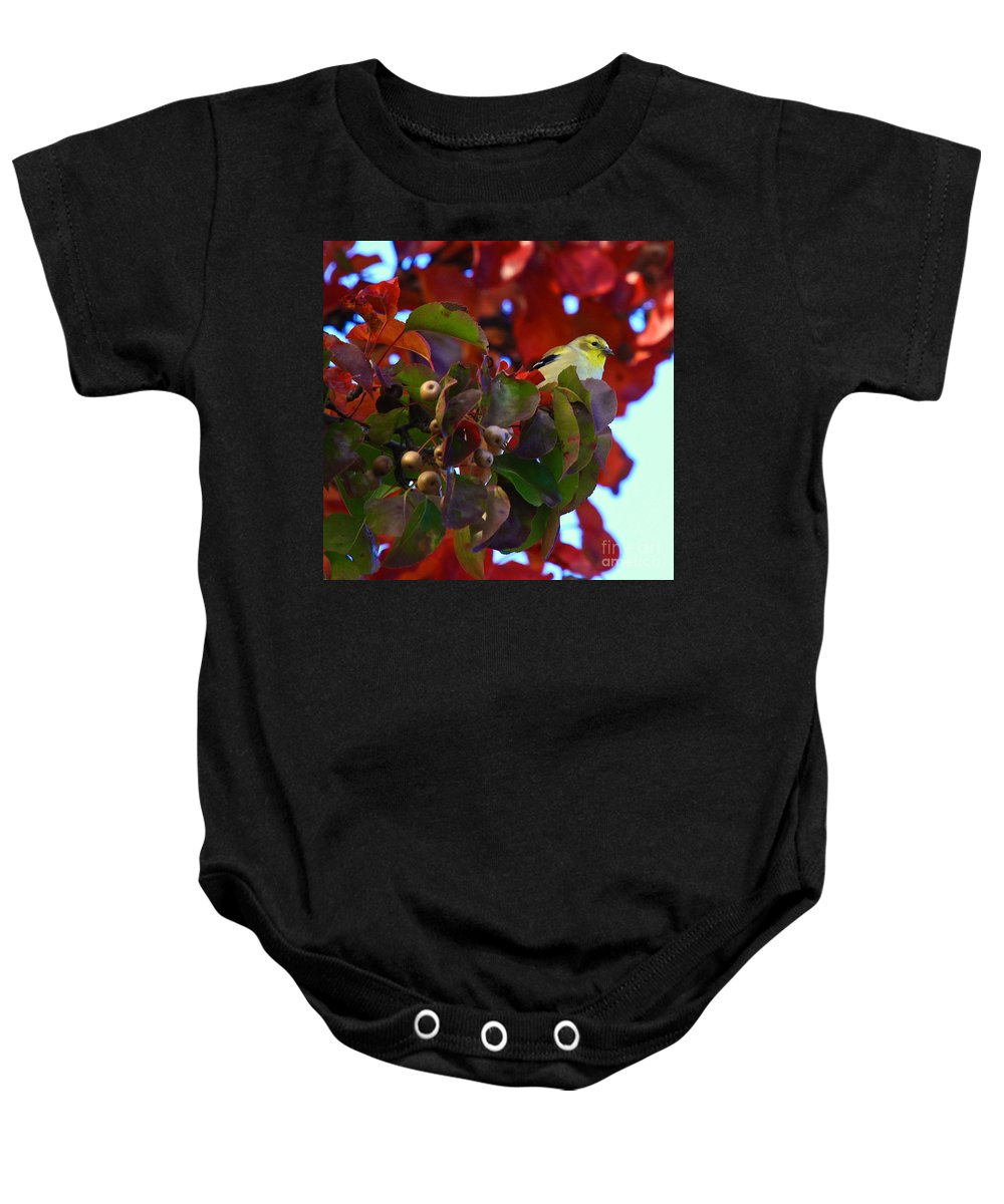 Gold Finch Baby Onesie featuring the photograph Gold Finch 22 by Robert Pearson