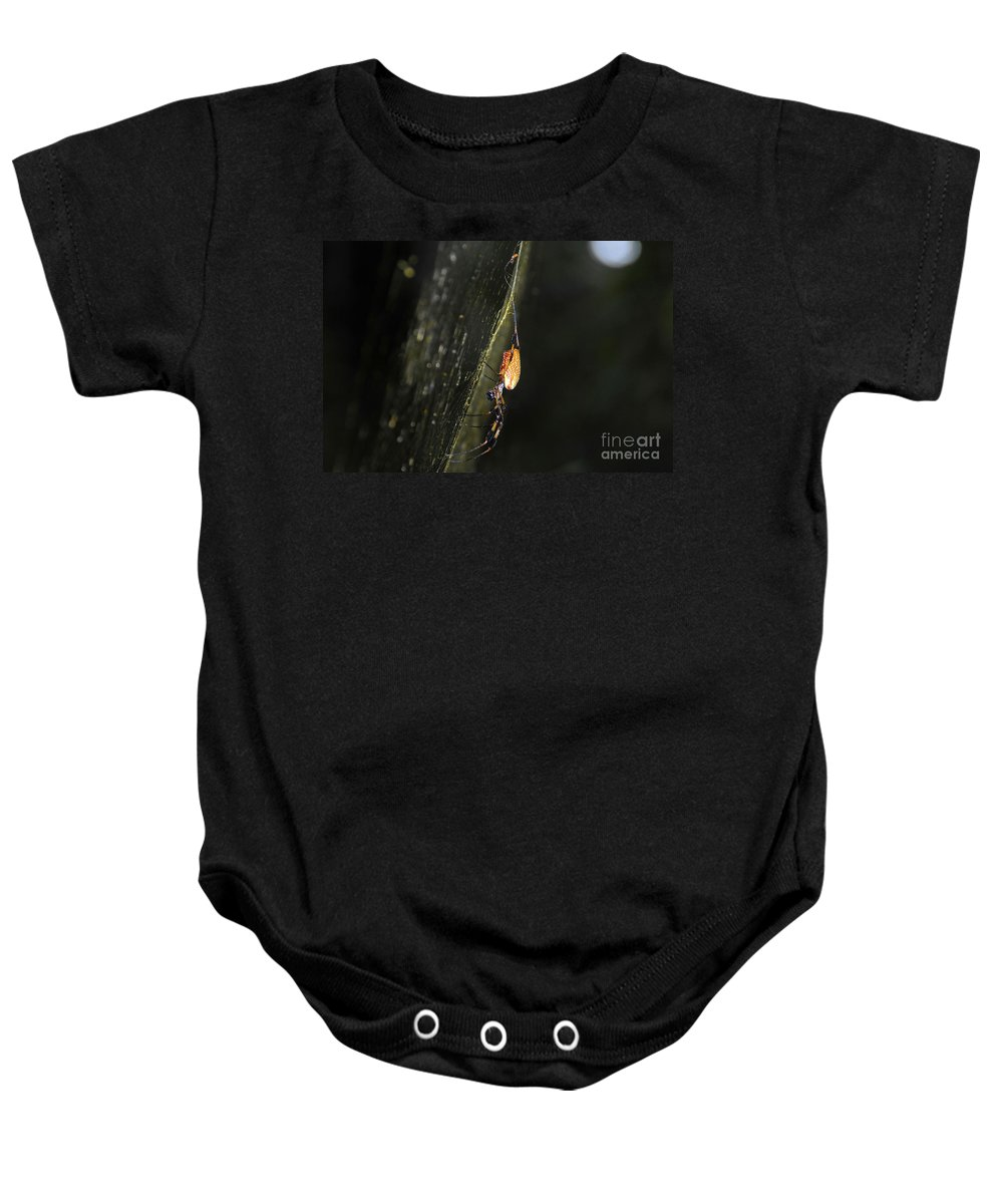 Golden Orb Spider Baby Onesie featuring the photograph Golden Orb Spider by David Lee Thompson