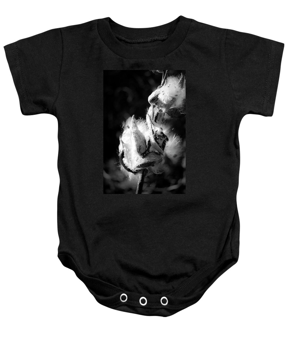 Seed Baby Onesie featuring the photograph Gone To Seed Milkweed 1 by Teresa Mucha